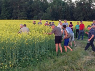 people-exploring-roadside-harvest