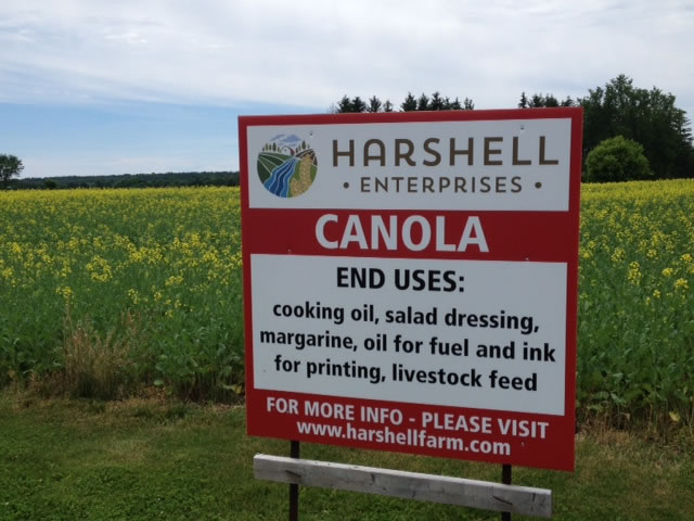 Road sign for Canola grown on Harshell Farm